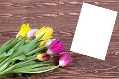 Tulipes colorées sur le fond en bois Jour de mères heureux Le printemps… a monté des feuilles, fond naturel Images libres de droits