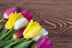 Tulipes colorées sur le fond en bois Jour de mères heureux Le printemps… a monté des feuilles, fond naturel Images stock