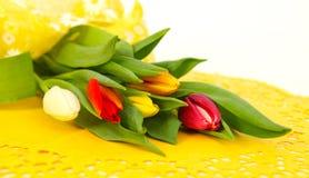 Tulipes colorées sur le jaune Image stock