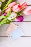 Tulipes colorées sur le pourpre Images stock