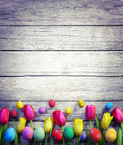 tulipes d'oeufs de pâques photographie stock