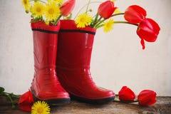 tulipes dans des bottes en caoutchouc Photo libre de droits