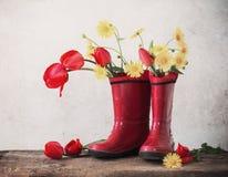 tulipes dans des bottes en caoutchouc Photographie stock