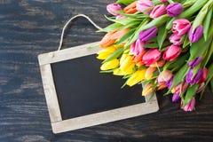 Tulipes dans des couleurs lumineuses Photo libre de droits