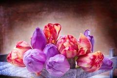 Tulipes dans la boîte en bois Photographie stock libre de droits