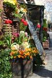 Tulipes dans le baril Photo libre de droits