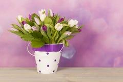 Tulipes dans le vase image libre de droits