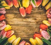 Tulipes dans un cadre en forme de coeur Images libres de droits