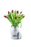 Tulipes dans un sac de papier Images stock
