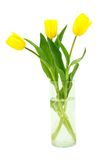 Tulipes dans un vase Photographie stock