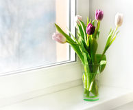 Tulipes dans un vase sur la fenêtre Image stock
