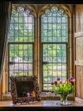 Tulipes dans un vase sur un rebord de fenêtre Photo stock