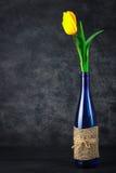Tulipes dans une bouteille Images stock