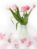 tulipes de bouquet de fond Image stock