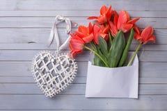 Tulipes de corail fraîches à l'enveloppe blanche et au coeur décoratif sur le GR Photos libres de droits
