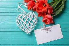 Tulipes de corail fraîches, coeur décoratif et Empty tag sur le pai de sarcelle d'hiver Photographie stock libre de droits