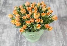 Tulipes de couleur orange dans le vase vert Grands bourgeons des tulipes multicolores Contexte naturel floral Tulipes bicolores r Photographie stock libre de droits