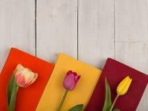 Tulipes de fleurs et livres colorés sur la table en bois blanche Photo libre de droits
