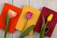 Tulipes de fleurs et livres colorés sur la table en bois blanche Photo stock