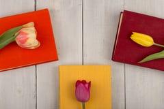 Tulipes de fleurs et livres colorés sur une table en bois blanche Photos stock