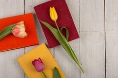 Tulipes de fleurs et livres colorés sur une table en bois blanche Images libres de droits