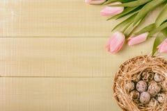 Tulipes de rose de fond de Pâques sur la table en bois, oeufs de caille, nid Image stock