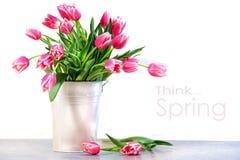 tulipes de rose en métal de conteneur blanches Photo libre de droits