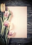Tulipes de vintage avec la feuille de papier Photos libres de droits