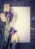 Tulipes de vintage avec la feuille de papier Images stock