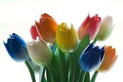 Tulipes en bois Photo libre de droits