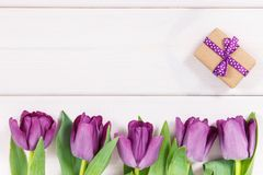 Tulipes et cadeau pourpres pour différentes occasions, l'espace de copie pour le texte sur les conseils blancs Photographie stock
