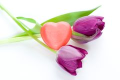 Tulipes et coeur Images stock