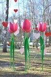 Tulipes et coeurs roses artificiels décoratifs contre le ciel bleu Images stock