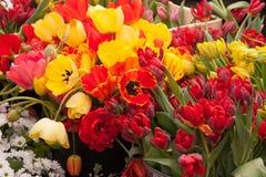 Tulipes et d'autres fleurs colorées sur l'affichage au marché d'agriculteurs Image libre de droits