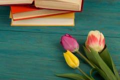 Tulipes et livres de fleurs sur la table en bois bleue Photo libre de droits