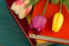 Tulipes et livres de fleurs sur la table en bois bleue Image stock
