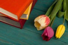 Tulipes et livres de fleurs sur la table en bois bleue Images stock