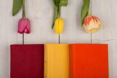 Tulipes et livres de fleurs sur une table en bois blanche Images stock