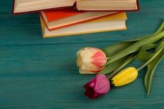 Tulipes et livres de fleurs sur une table en bois bleue Image stock