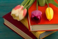 Tulipes et livres de fleurs sur une table en bois bleue Photographie stock
