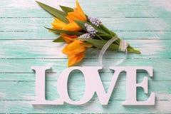 Tulipes fraîches et amour en bois de mot Photo libre de droits