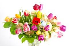 Tulipes fraîches multicolores de source avec des oeufs de pâques Images libres de droits