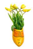 Tulipes hollandaises photo stock