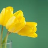 Tulipes jaunes dans le vase Image libre de droits