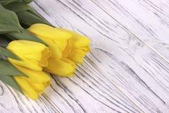 Tulipes jaunes de ressort sur le fond en bois blanc Place pour le texte Le jour de la femme 8 mars Photographie stock libre de droits