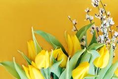 Tulipes jaunes sur le jaune Image libre de droits