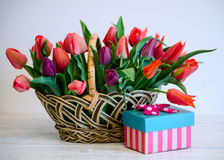 Tulipes Jour du `s de mère Bouquet coloré des tulipes dans le panier sur le fond blanc photos stock