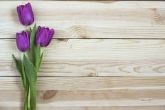 Tulipes lilas sur le fond en bois planked d'en haut, vacances De Image stock