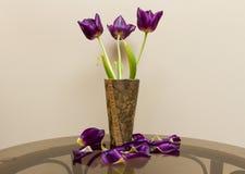 Tulipes marron Photo stock