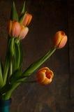 Tulipes oranges Images stock